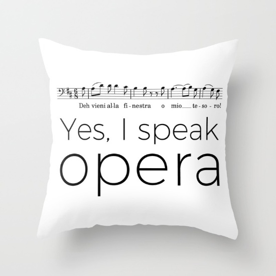 i-speak-opera-baritone-pillows
