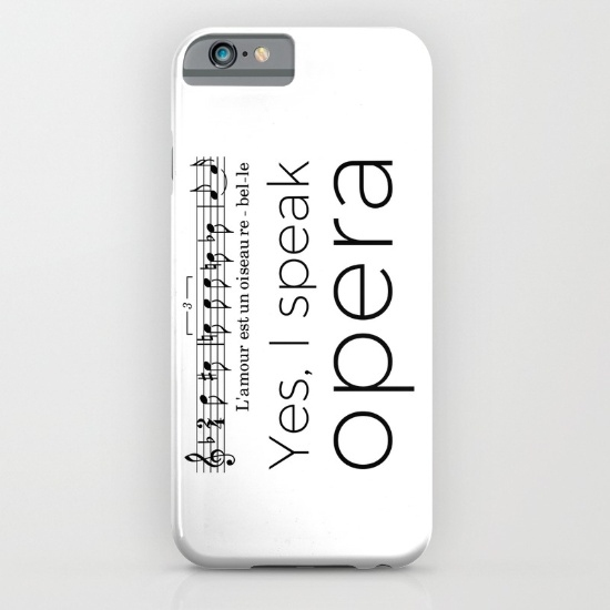 i-speak-opera-mezzo-soprano-cases