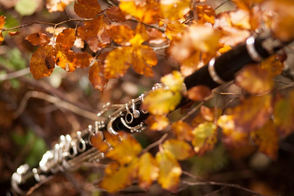 Clarinette d'automne